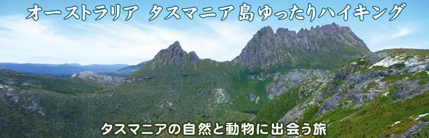 オーストラリア タスマニア島ゆったりハイキング 9日間