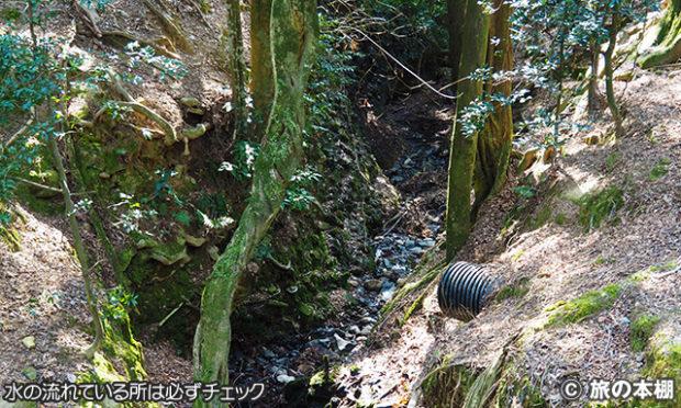 野鳥の見つけ方 その8 小川などは要チェック