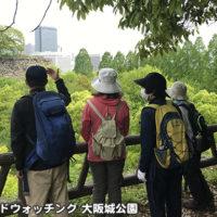 初めてのバードウォッチング 大阪城公園